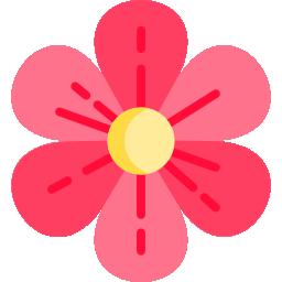 Skicka blomsterbud - Så går det till